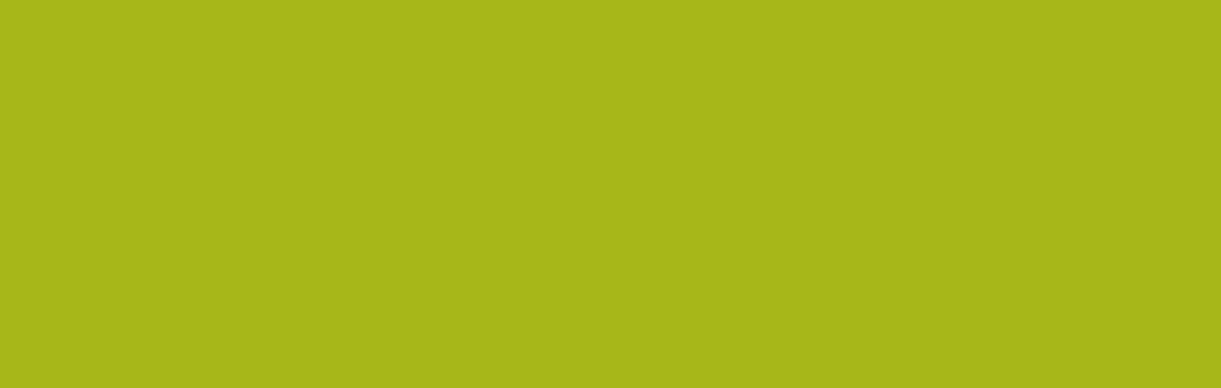 Pellentesque Mollis Condimentum
